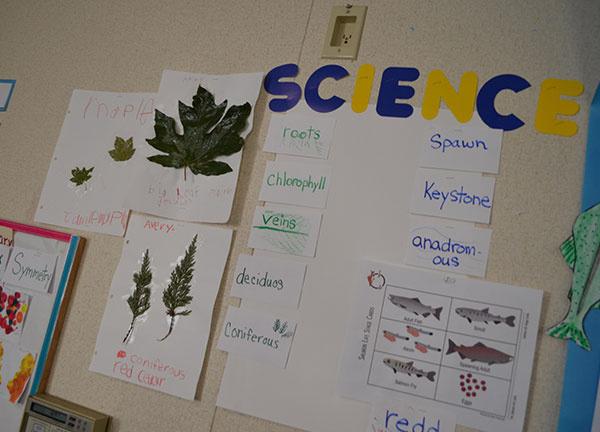 Science Board