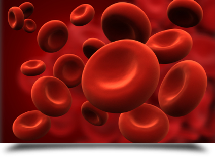 Top bloodborne pathogen safety images for pinterest tattoos for Bloodborne pathogens for tattoo artists