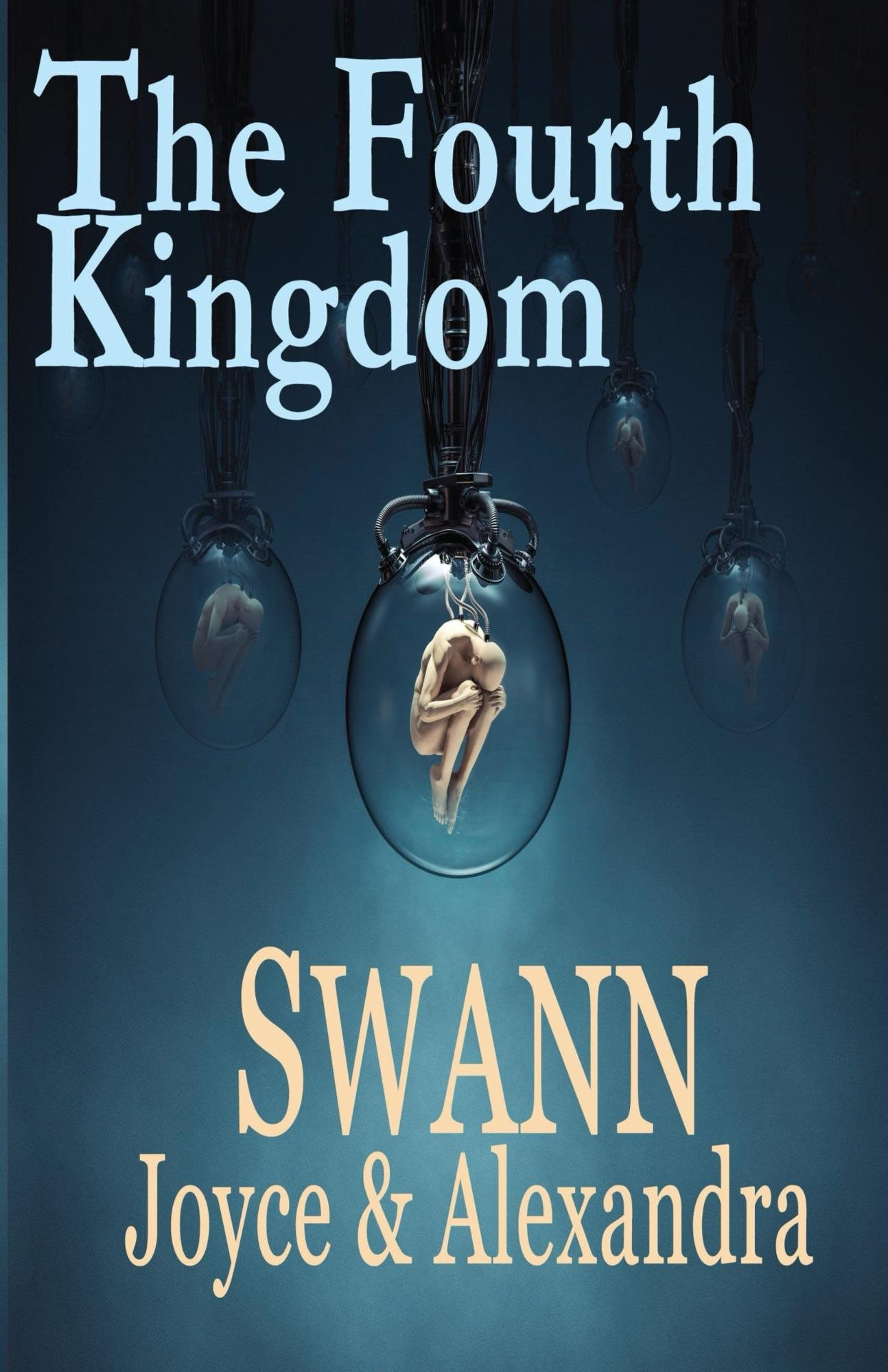 https://0201.nccdn.net/1_2/000/000/08a/355/The_Fourth_Kingdom_Cover_for_Kindle-1294x2000.jpg