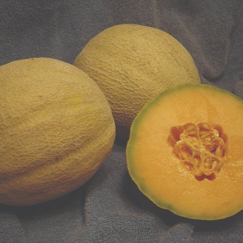 Melon Rockstar