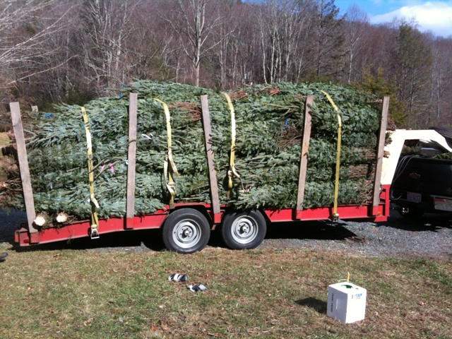 One of our customers preparing to head to the mountain with their first load of the season.