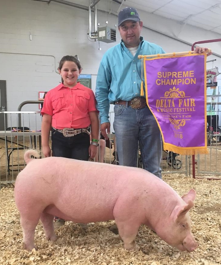 Ann Thomas Lowery 2018 Delta Fair & Music Festival Open Show Supreme Champion Overall Champion Yorkshire Gilt