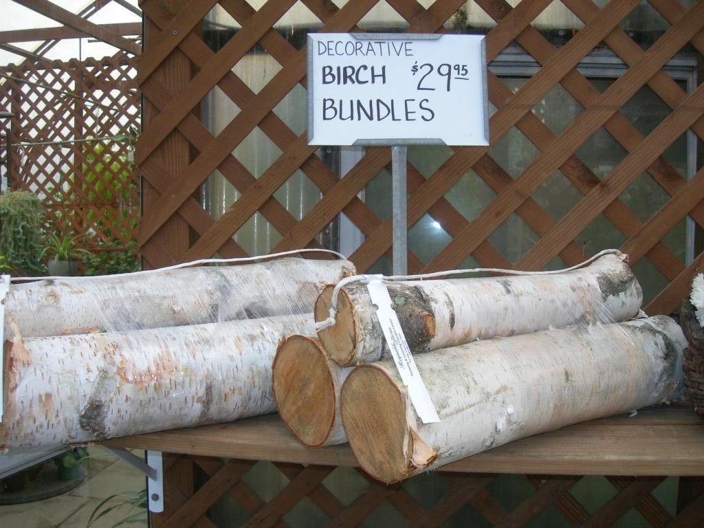Birch Bundles