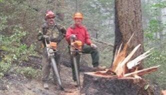 Tree Fallers