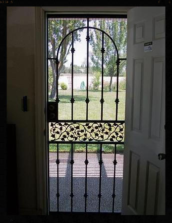 ENGLISH IVY  STEEL SCREEN DOOR  LOOKING OUT FROM INSIDE