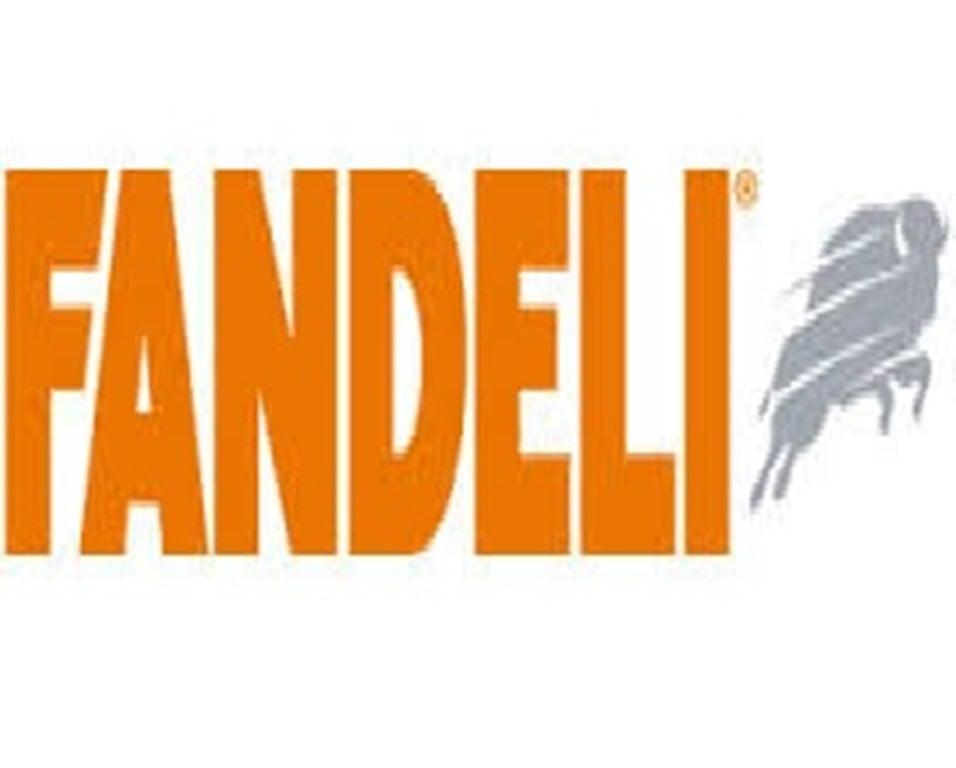 https://0201.nccdn.net/1_2/000/000/08f/723/logo-fandeli.jpg