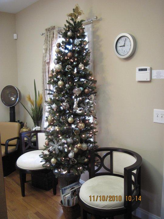 Christmas 2009-2010