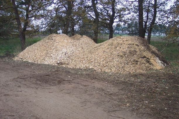Wood Chipping - Cambridgeshire