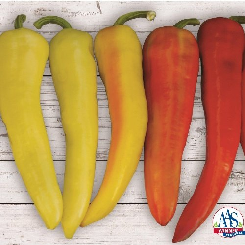 Pepper Sweet Sunset X3R®