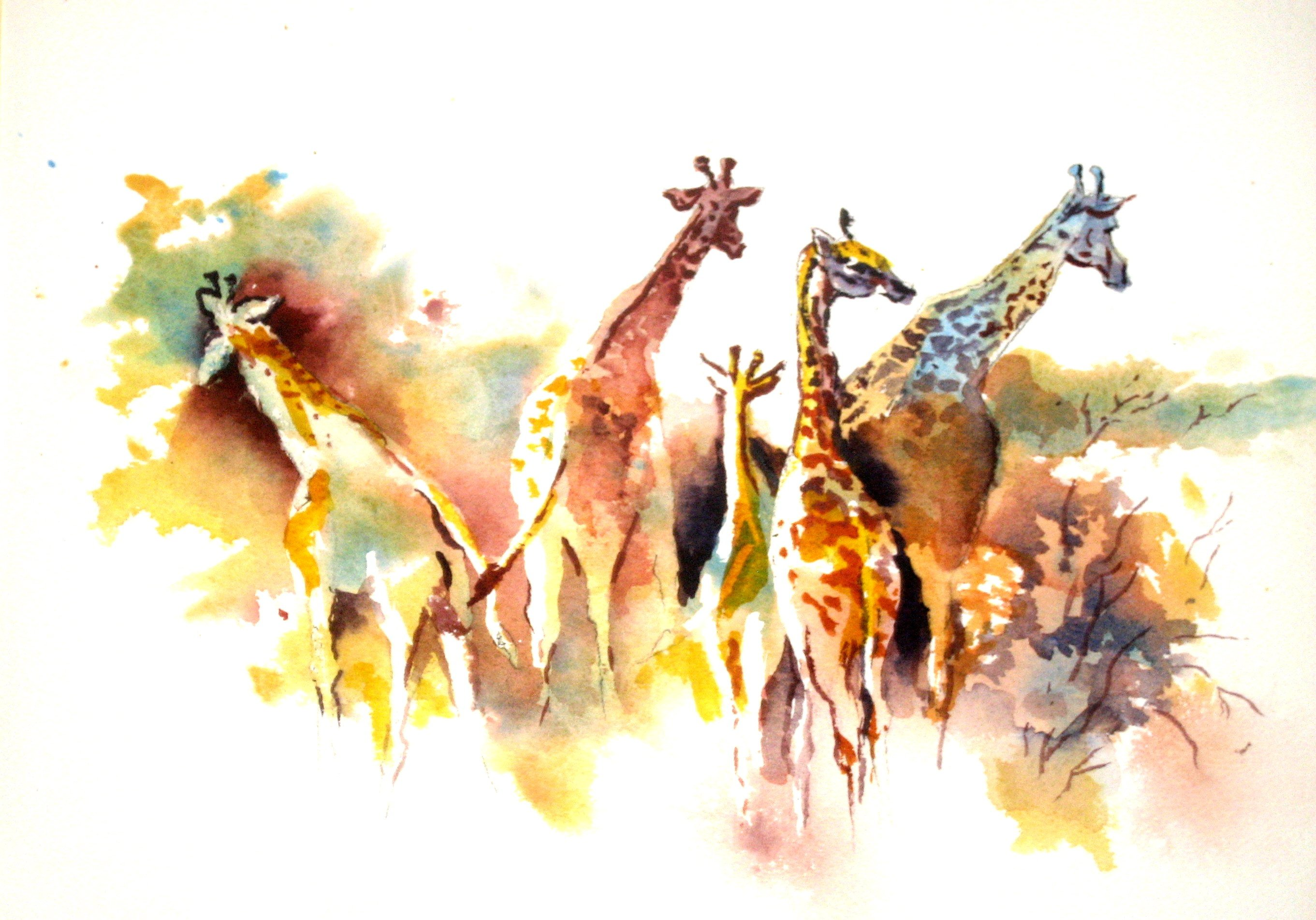 Color Giraffes