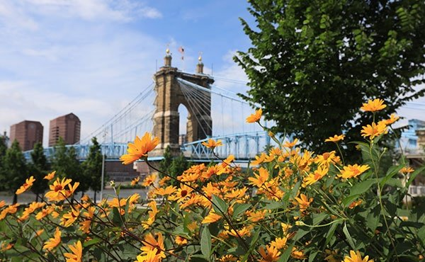 Roebling Bridge