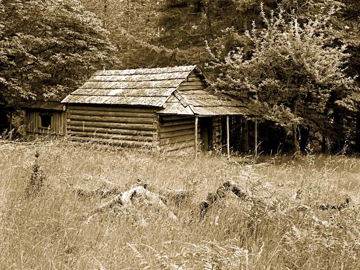 Elwha Homestead Cabin