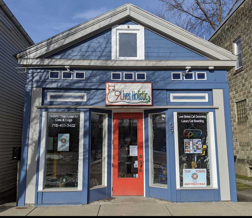 Pet Storefront 1