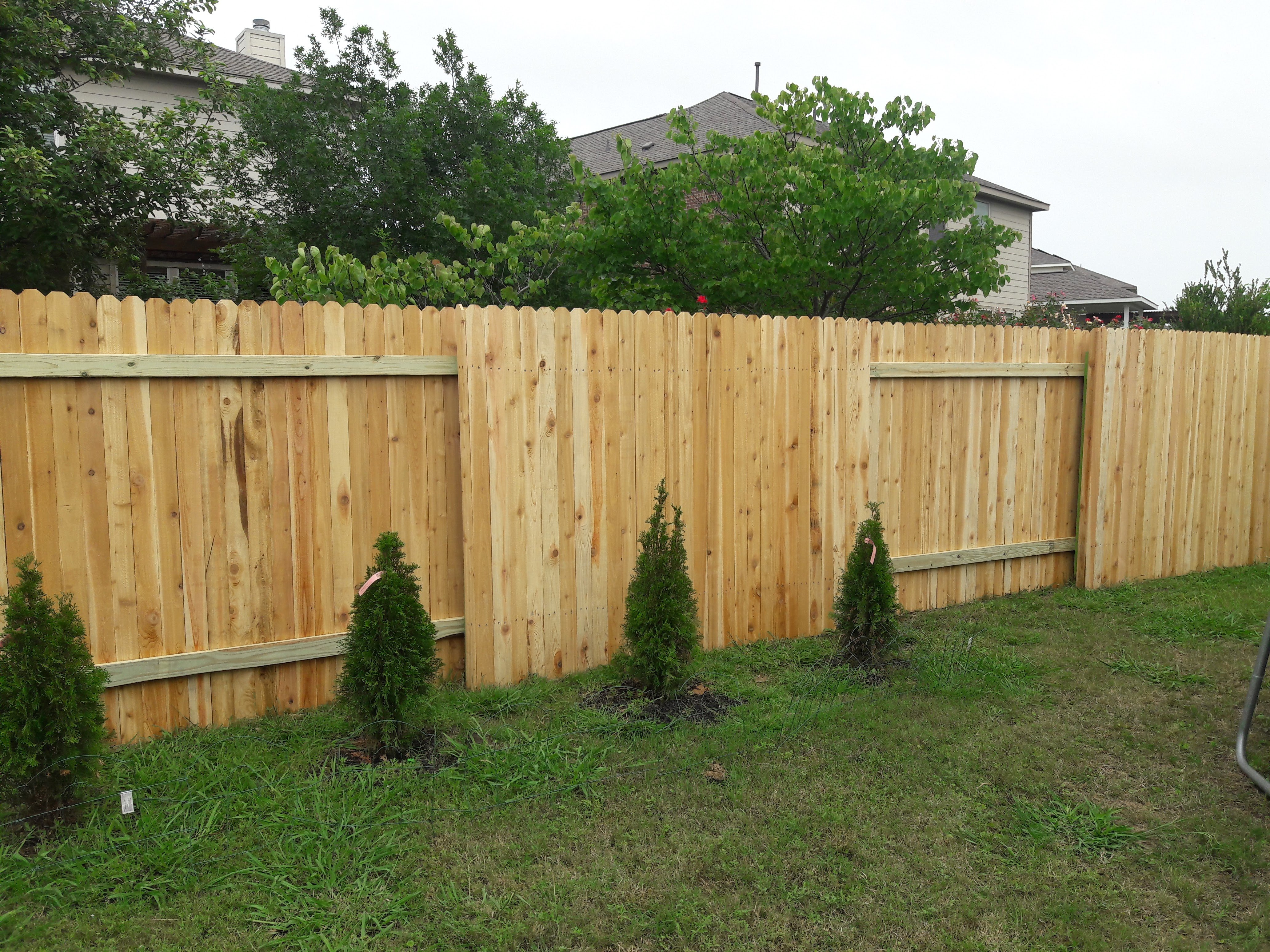 New Backyard Fence