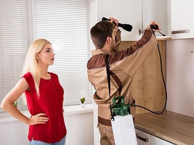 Worker Spraying Pesticide On Shelf In Kitchen