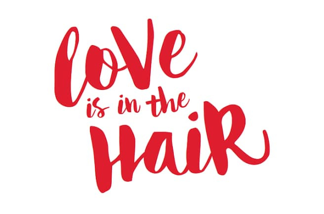 https://0201.nccdn.net/1_2/000/000/097/bda/Love-is-in-the-Hair-656x433.jpg
