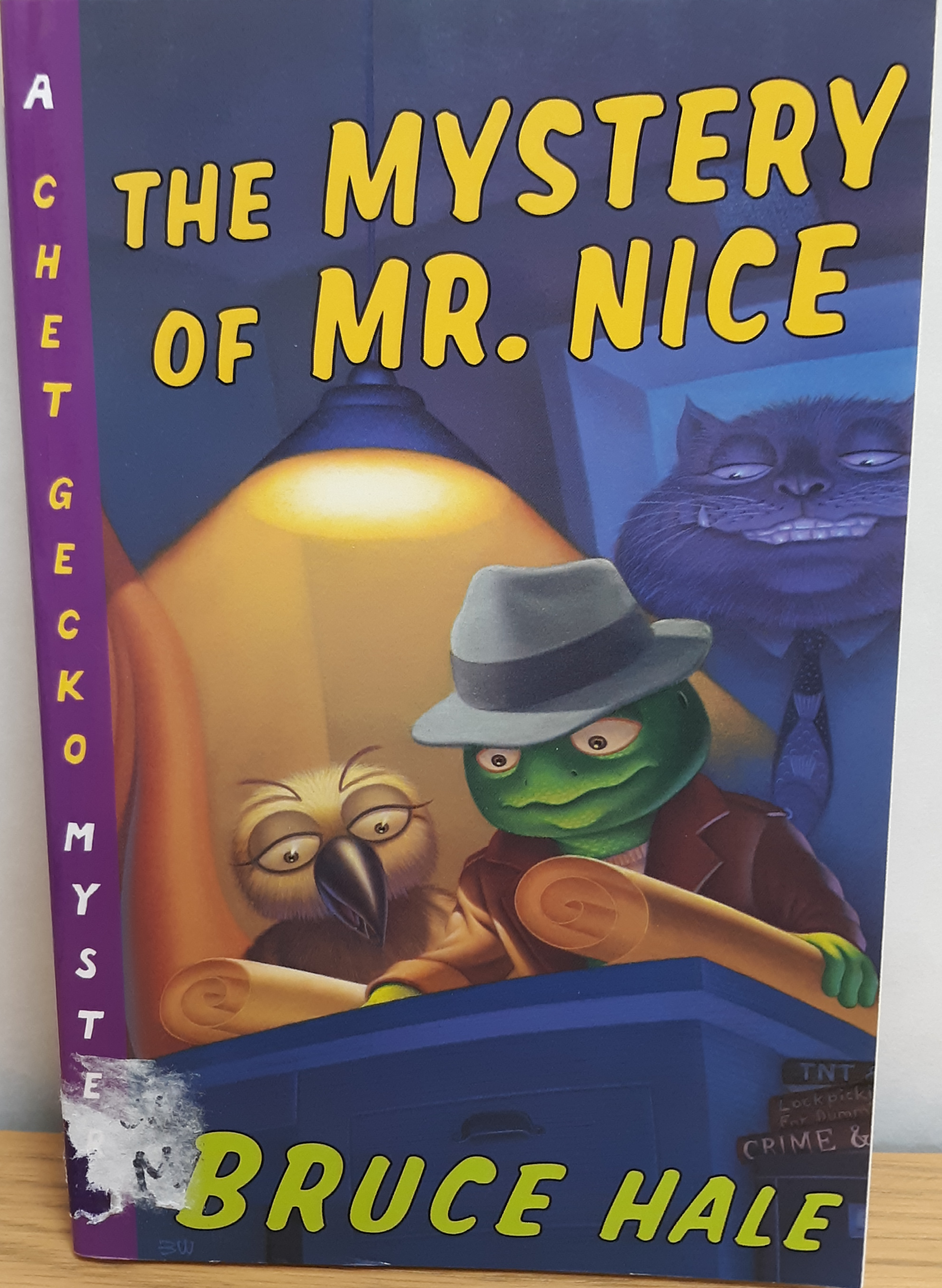 https://0201.nccdn.net/1_2/000/000/099/3b7/the-mystery-of-mr.-nice.png