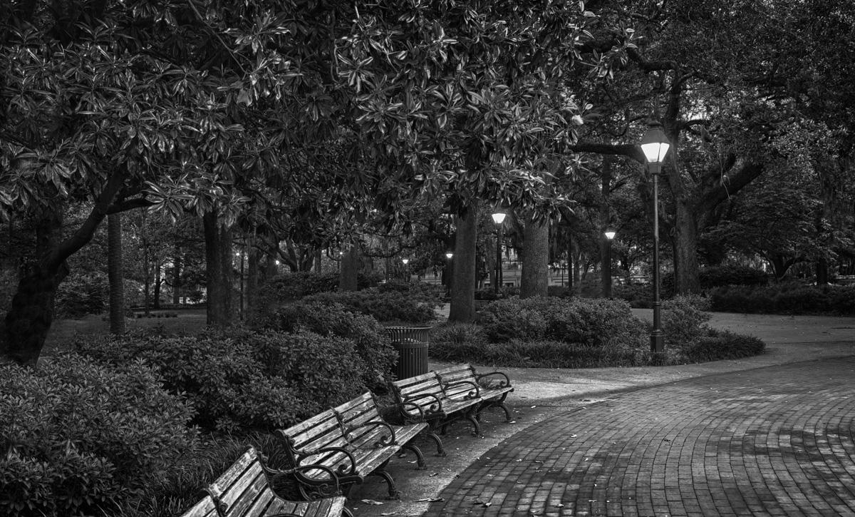 Forsyth Park Bench