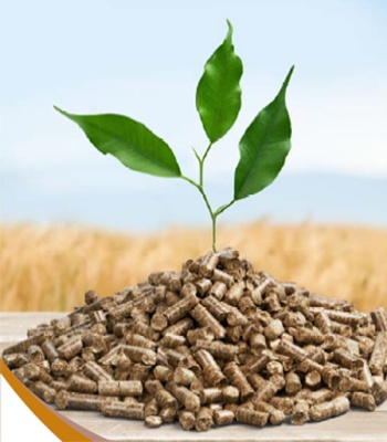 Plant and Pellets