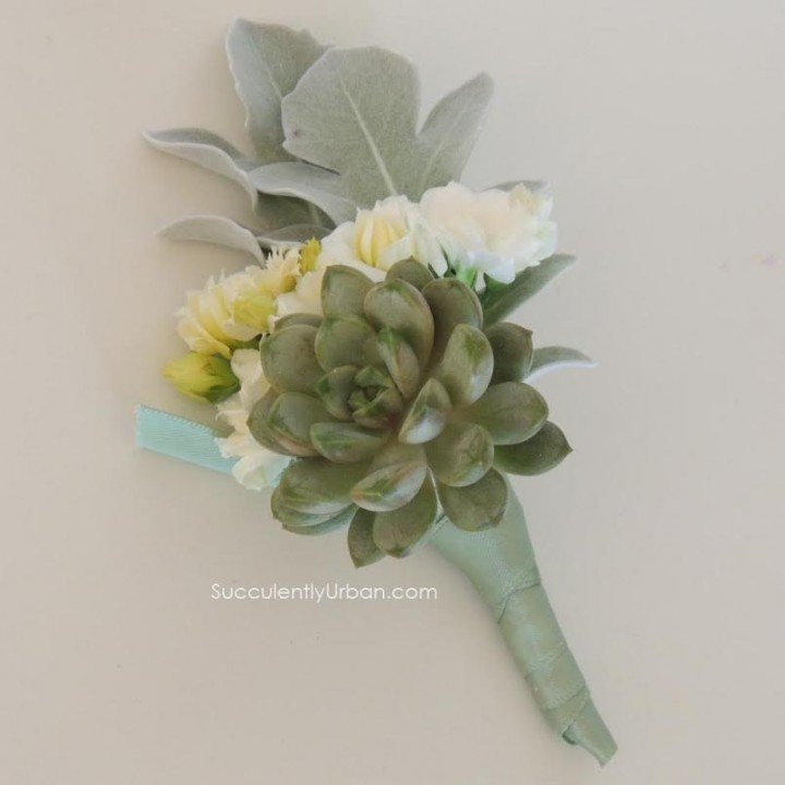 Succulent Boutonniere with Greenery