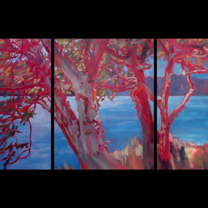 Madrona Meditation Triptych 40x62