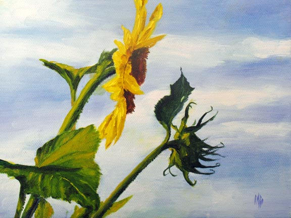 """Sunflower - 6""""x8"""" Oil on Stretched Canvas  SOLD"""