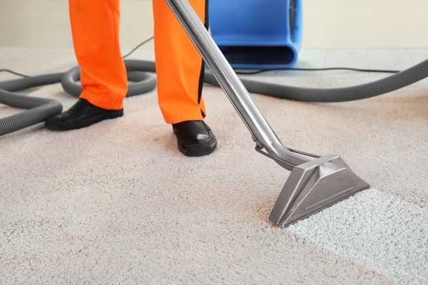 Employee Removing Dirt from Carpet
