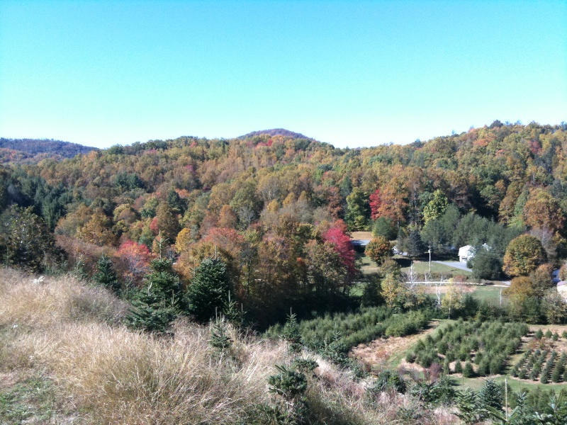 Fall colors are in full swing at the farm. Check out the view of the surrounding mountains as seen from the farm.