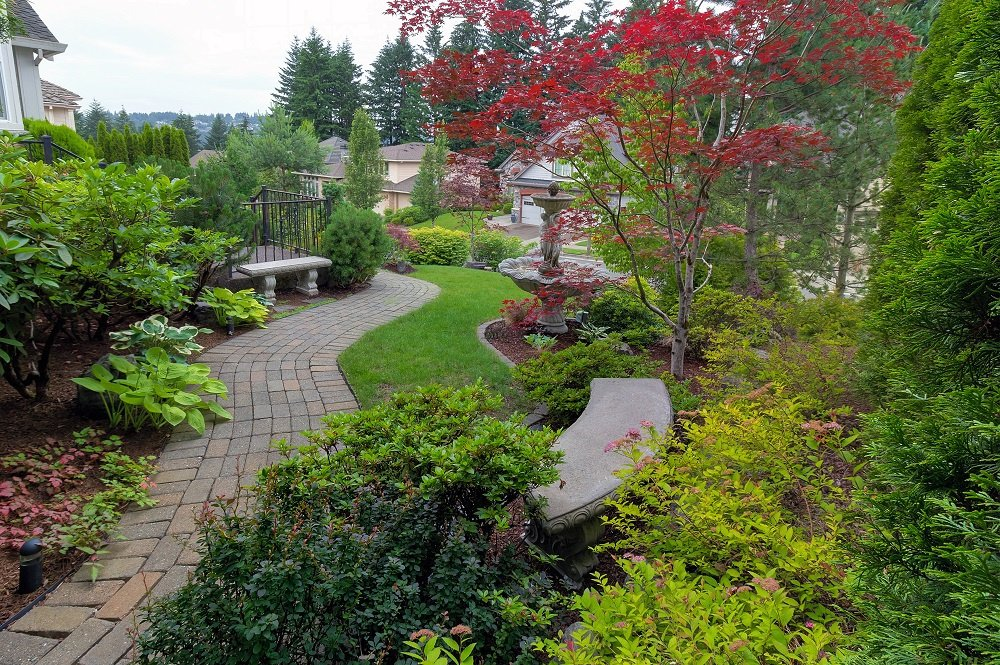 Large beautiful garden with walkway