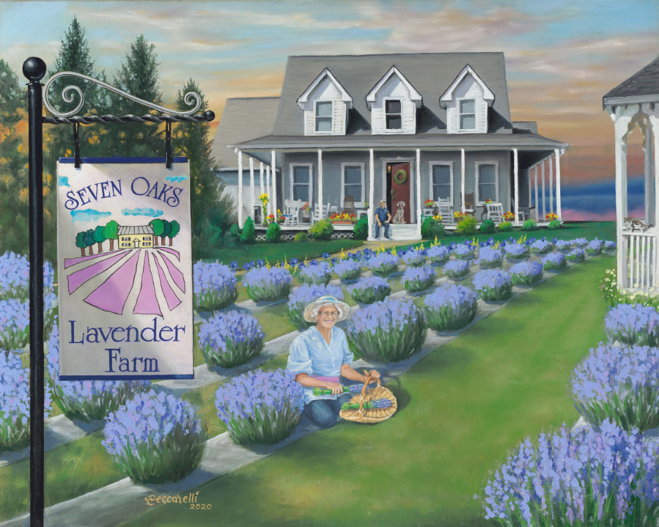 https://0201.nccdn.net/1_2/000/000/0a0/003/seven-oaks-lavendar-farm-96.jpg
