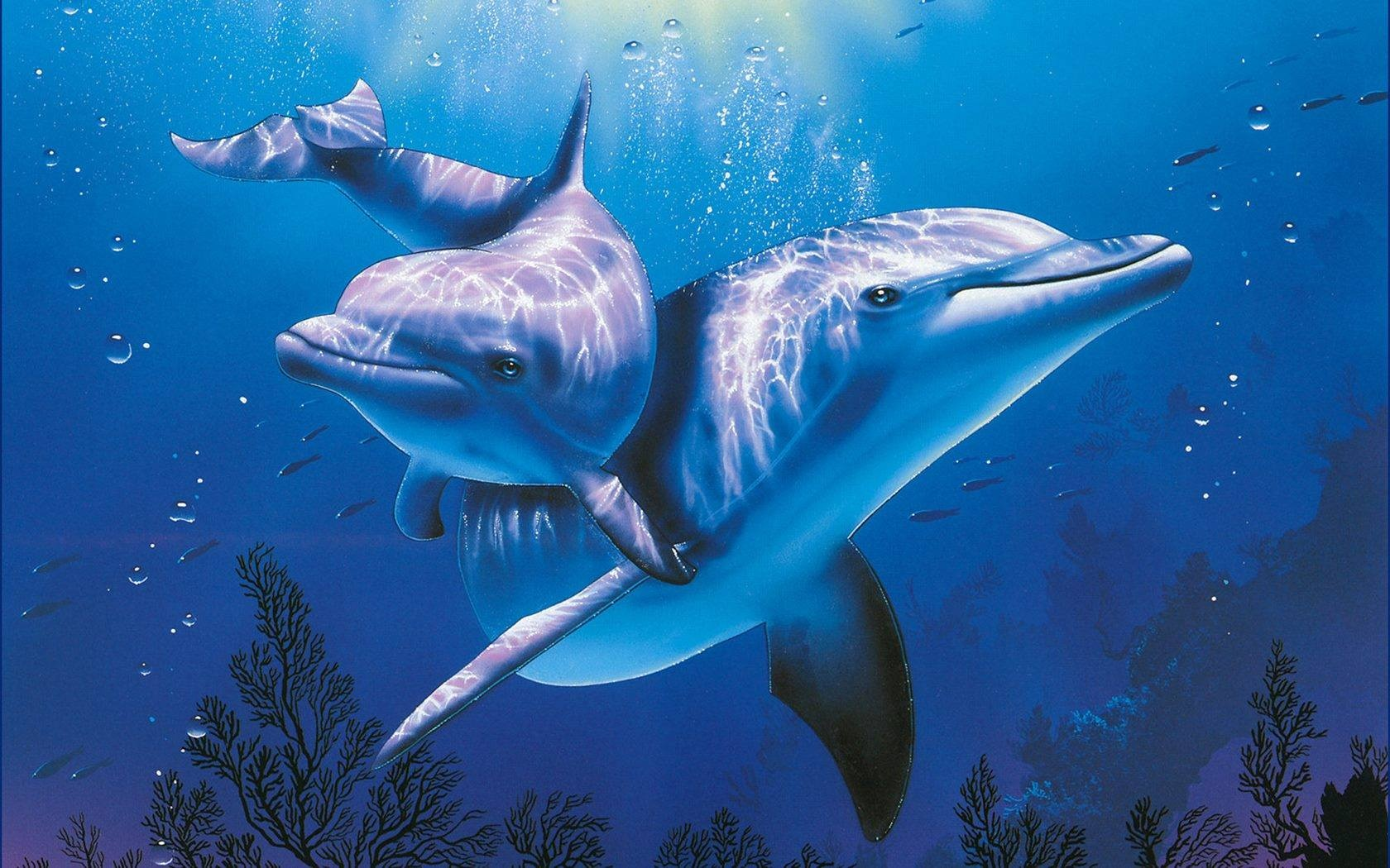 Painting of Dolphins