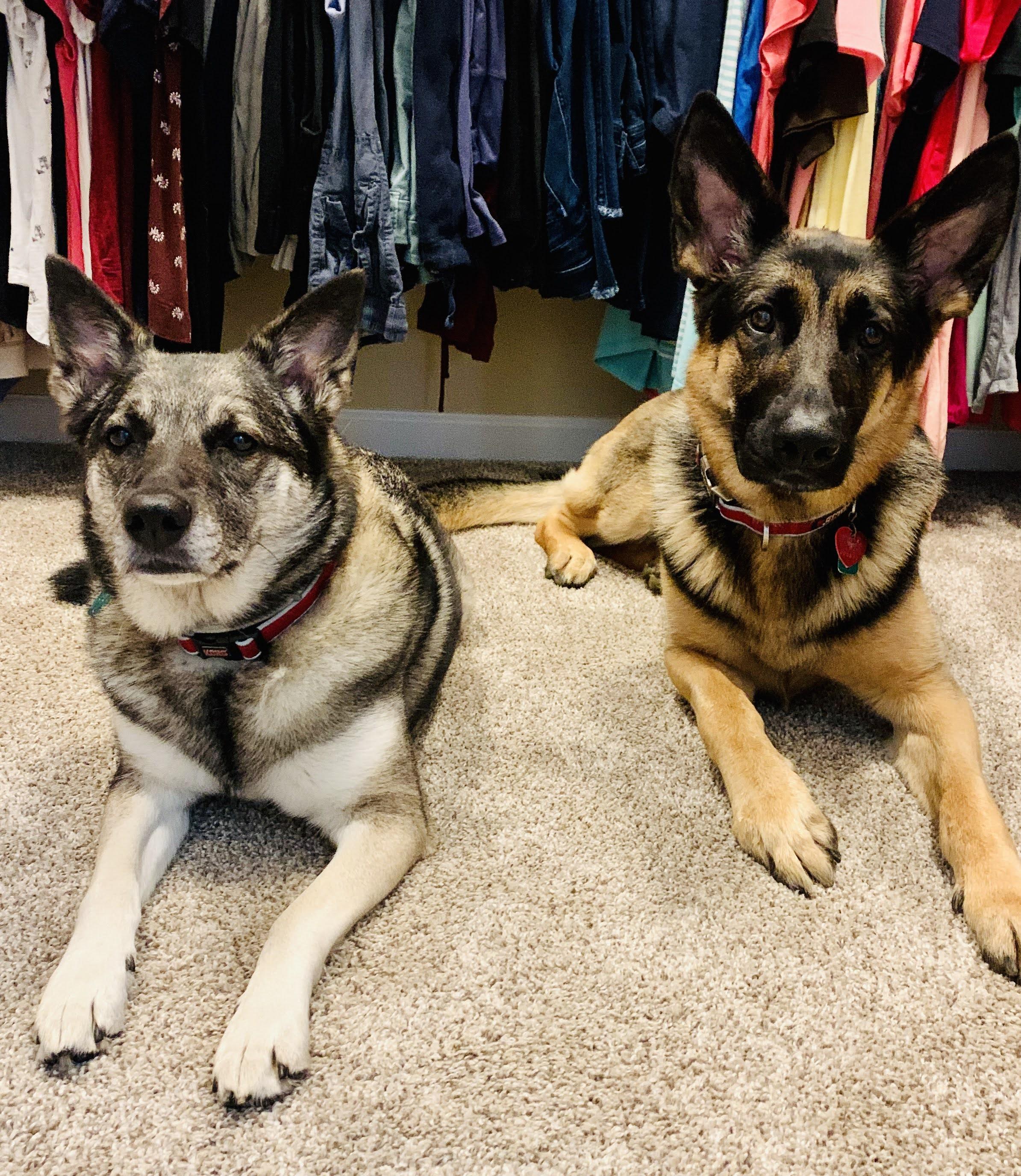 Sadie & Piper