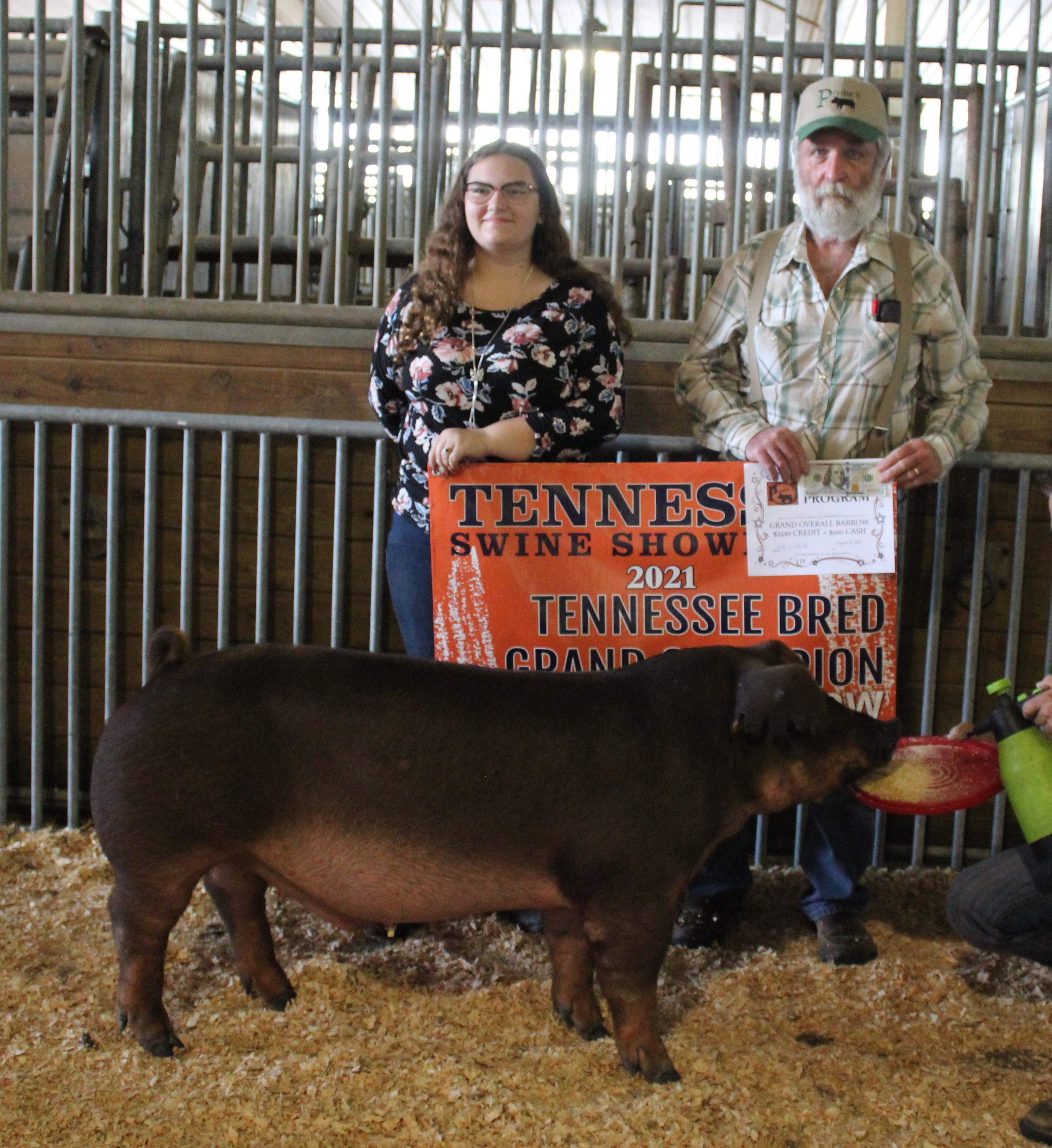 Alexis Mears 2021 TN Swine Showdown Champion Duroc Barrow (TN Bred) Grand Champion Overall (TN Bred)