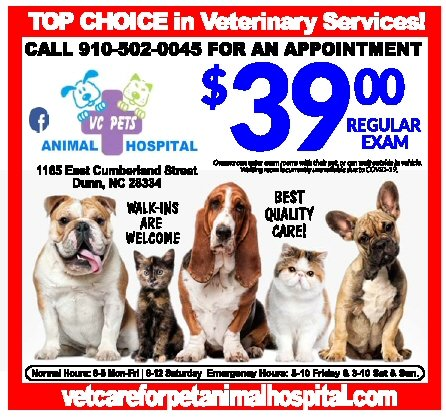 https://0201.nccdn.net/1_2/000/000/0a3/1eb/vet-care-for-pets.jpg