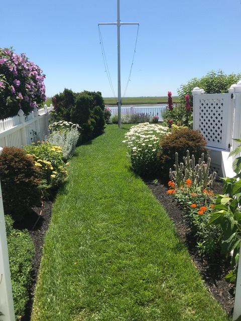 Landscaped Yard 2