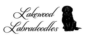Lakewood Australian Labradoodles