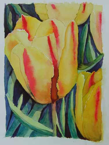 Yellow Tulips ... Watercolour
