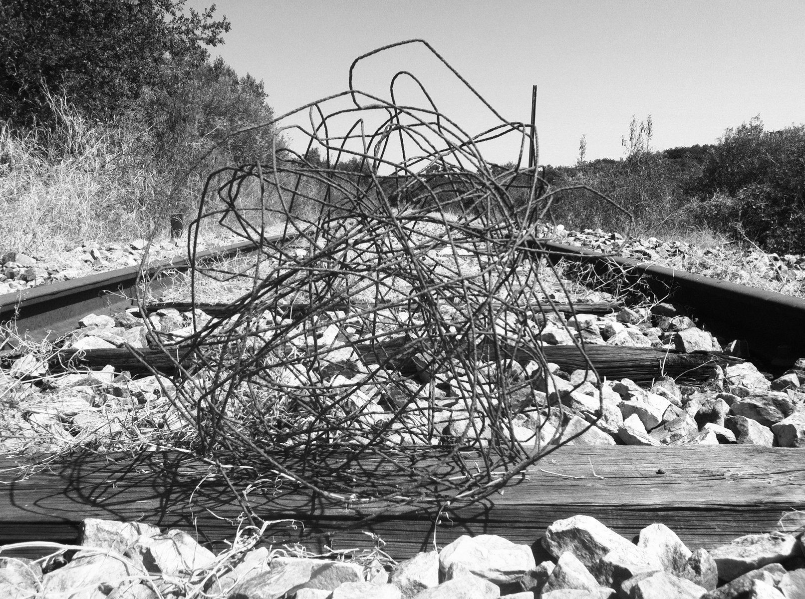 A ball of wire placed between old, receding railroad tracks in a dry rural setting.