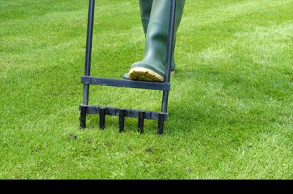 Regular grounds maintenance    