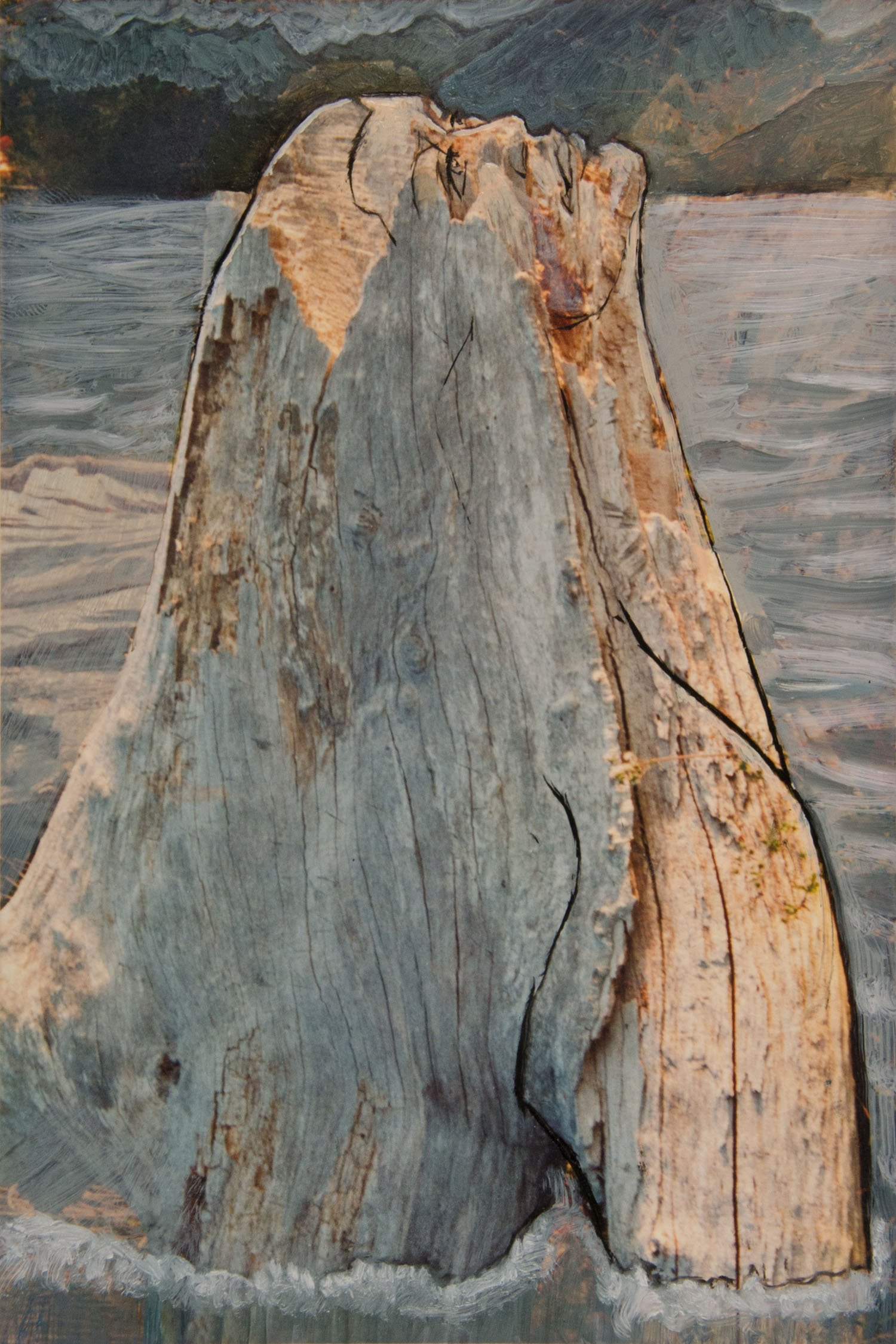 Whale Maiden