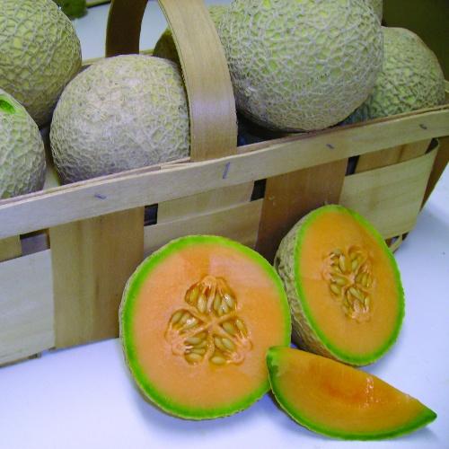 Melon Sugar Cube