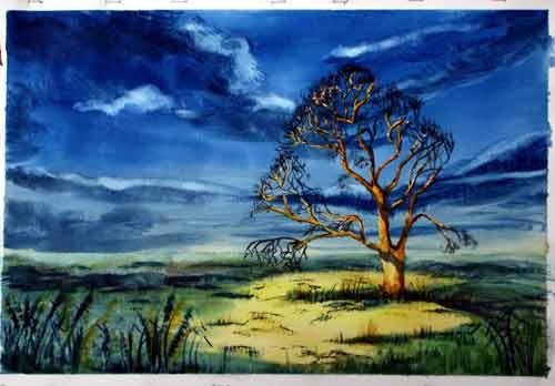 Evening Sunlit Tree ... Watercolour