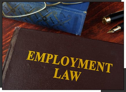 Book with Title Employment Law