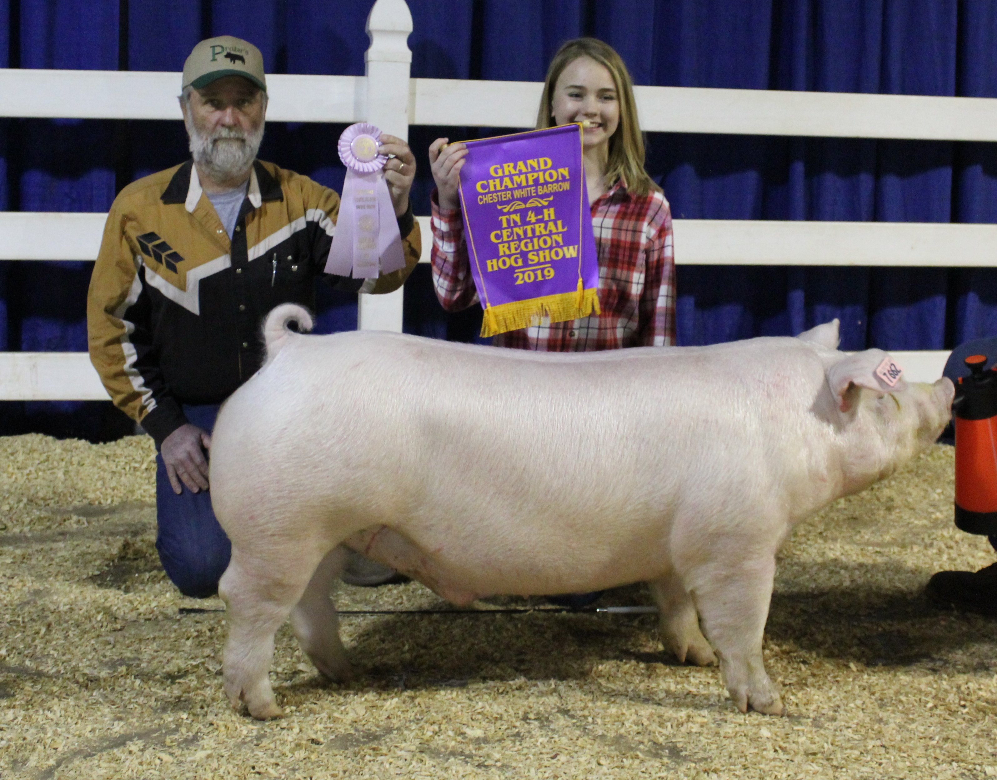 Hannah Sanders 2019 TN Central Region Show Champion Chester White Barrow 2019 Tennessee State Show Reserve Champion Chester White Barrow