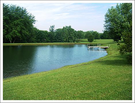 Lawn near pond||||