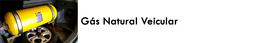 https://0201.nccdn.net/1_2/000/000/0af/bd3/G--s-natural-veicular-900x139.jpg
