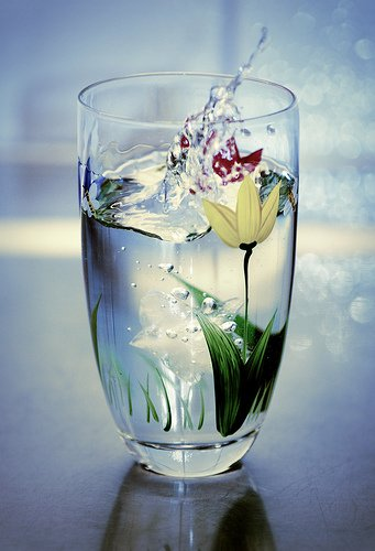 Energized Water