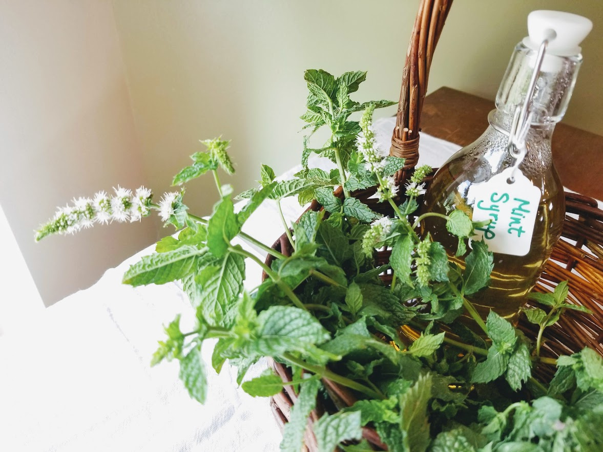 Recipe for Mint Syrup