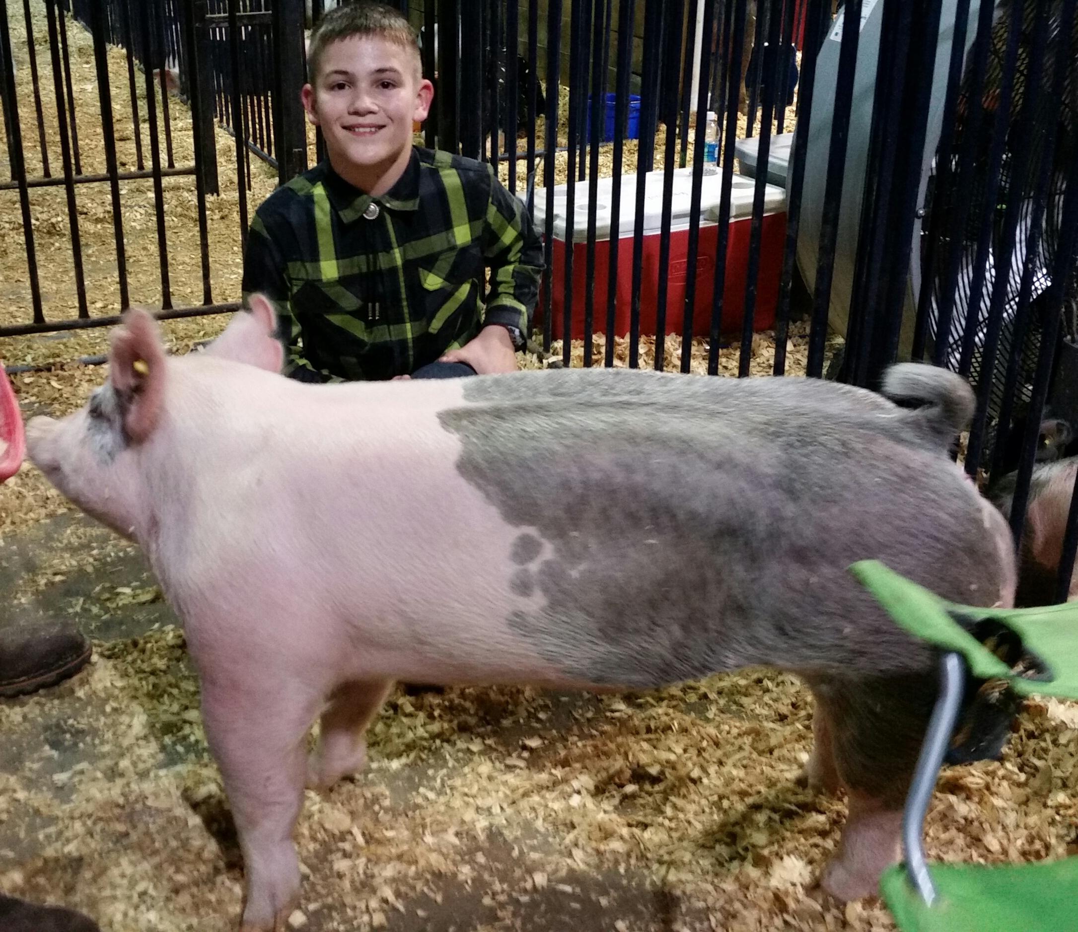 Kalan Lusk 2017 TN State Market Hog Show 1st in Class