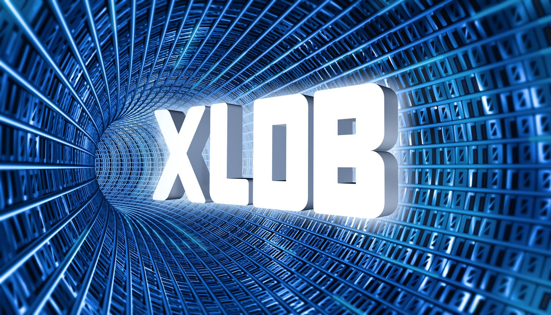 XLDB Branding